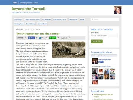 Beyond the Turmoil website